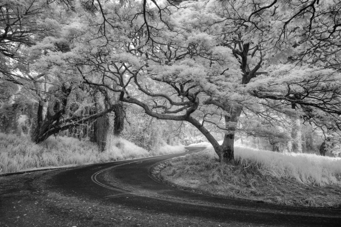 Tantalus Drive in Infrared