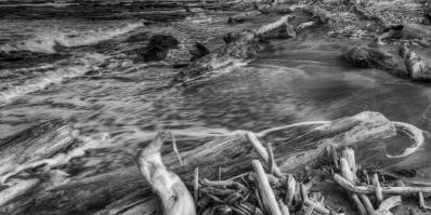 Driftwood Beach (Kauai)