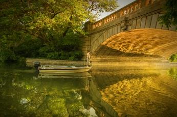 Sunlight Under Bridge