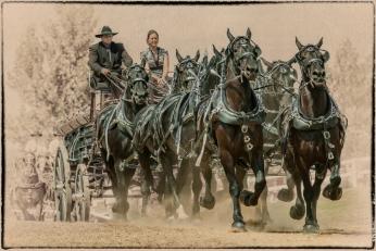 Draft Horses 1-John A Olson-PFA