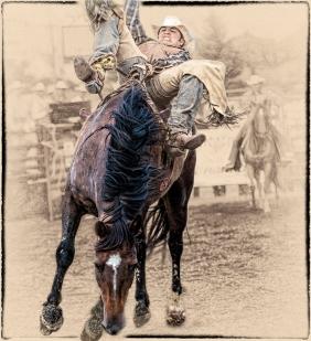 Hamel Rodeo 1-John A Olson-PFA