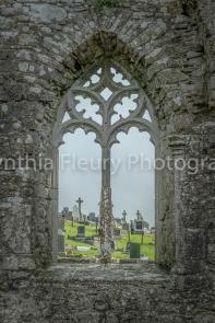 Cynthia Fleury-Abbey Window
