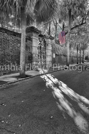 flag and shadow charleston